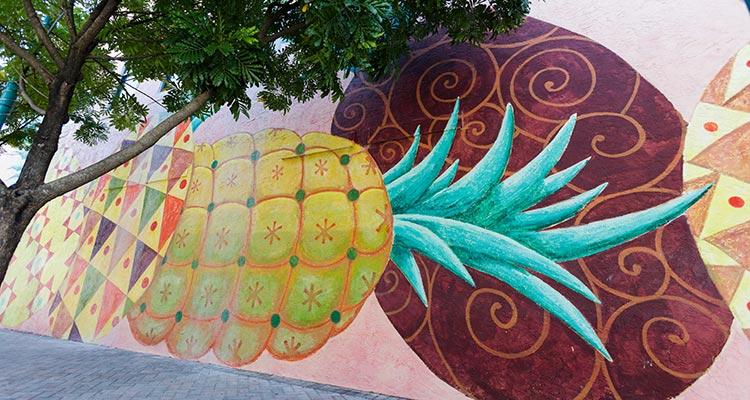 Pineapple Grove Anita Lovitt
