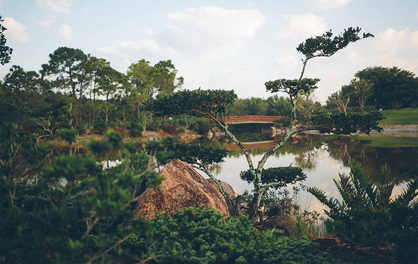 Gardens To Explore In The Palm Beaches