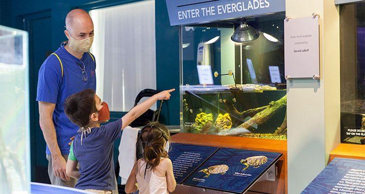 South Florida Science Center & Aquarium - family wearing masks