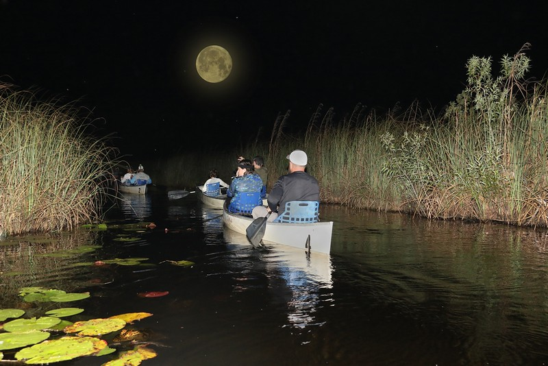 Moonlight Guided Canoe Tours
